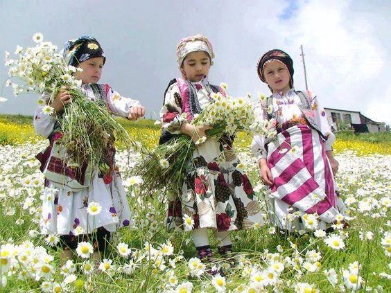 Black Sea girls picking daisies, Turkey. traditional dress,