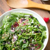 Thermomix Sweet Green Salad with cranberries and a raspberry vinigerette with cheese
