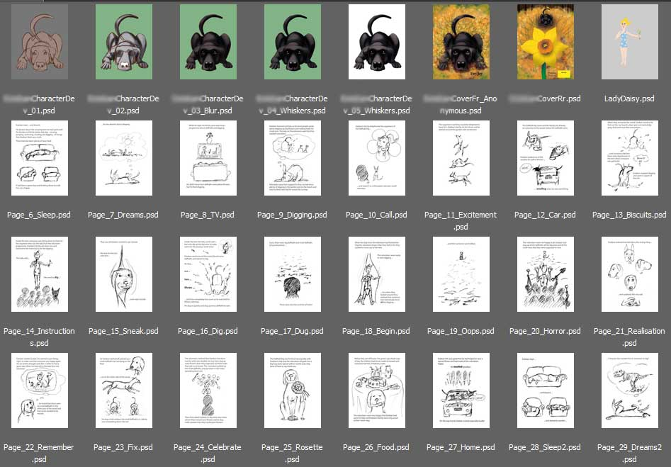 complete illustration process from concept to pitch