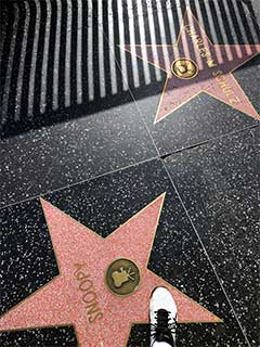 My foot on Snoopy and Charles' stars on the Hollywood Walk of Fame