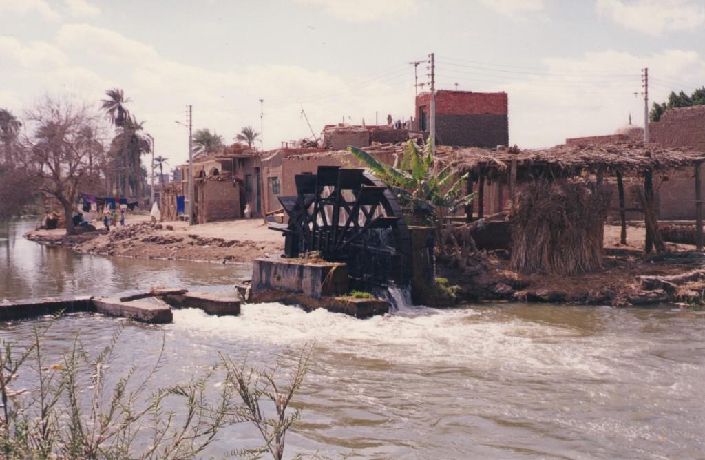fayoum-egypt-12