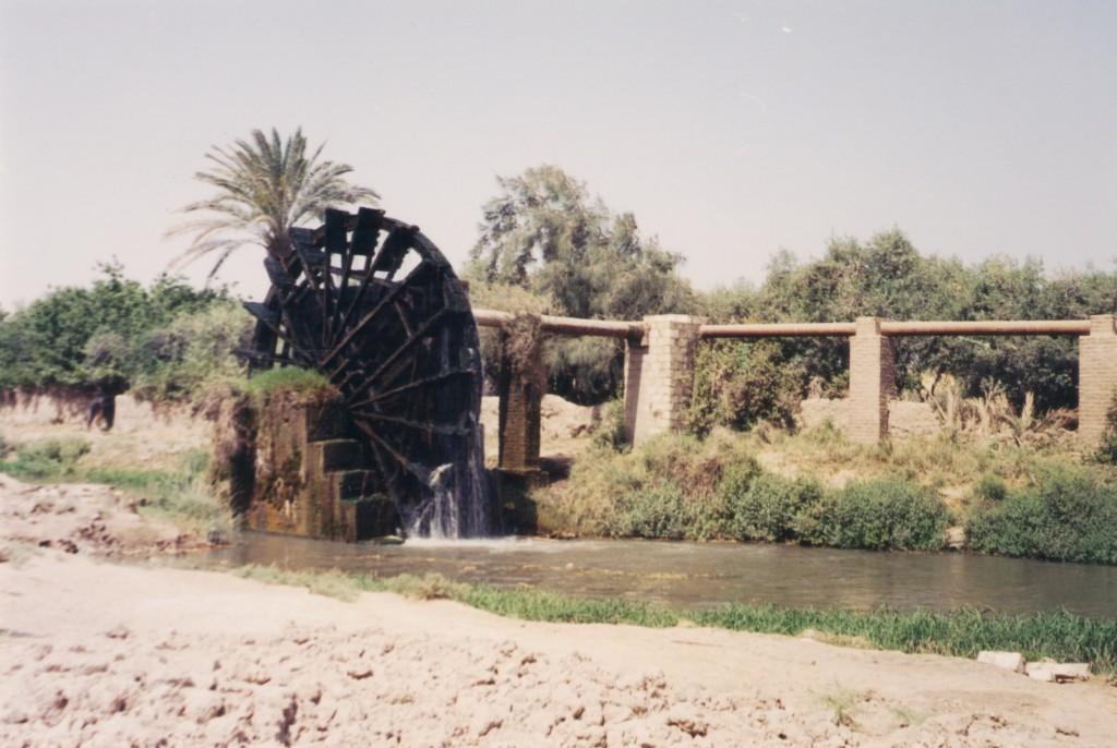 Fayoum-Egypt (4)