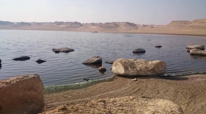 El Megrah Island in Lake Qaroun