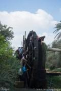 Largest Water Wheel in Egypt (7)