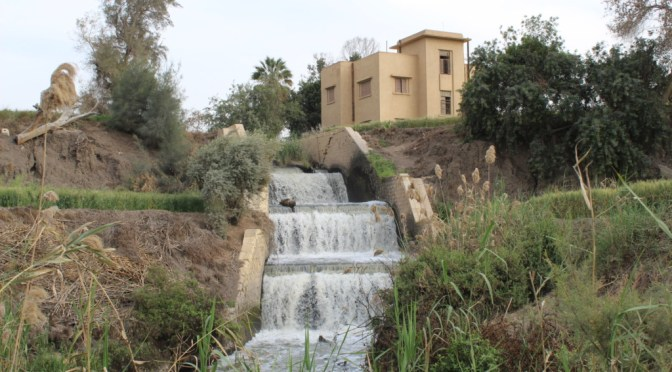 Meet Fayoum's Hidden Waterfalls!