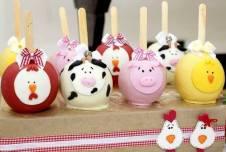 Doces-aniversário-tema-Fazendinha-Country-São-João-44 Idéias para festa Infantil com tema Fazendinha para meninos e meninas