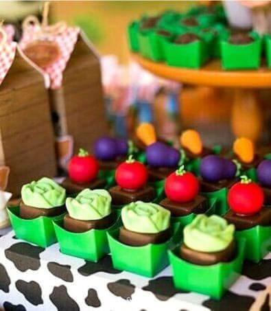 Doces-aniversário-tema-Fazendinha-Country-São-João-74 Idéias para festa Infantil com tema Fazendinha para meninos e meninas