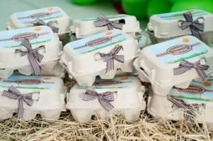 Lembrancinha-aniversário-fazendinha-caixinha-de-ovos Idéias para festa Infantil com tema Fazendinha para meninos e meninas