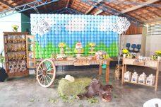 aniverssário-infantil-decoração-tema-festa-fazendinha-08 Idéias para festa Infantil com tema Fazendinha para meninos e meninas