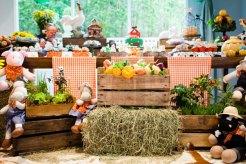 aniverssário-infantil-decoração-tema-festa-fazendinha-25 Idéias para festa Infantil com tema Fazendinha para meninos e meninas
