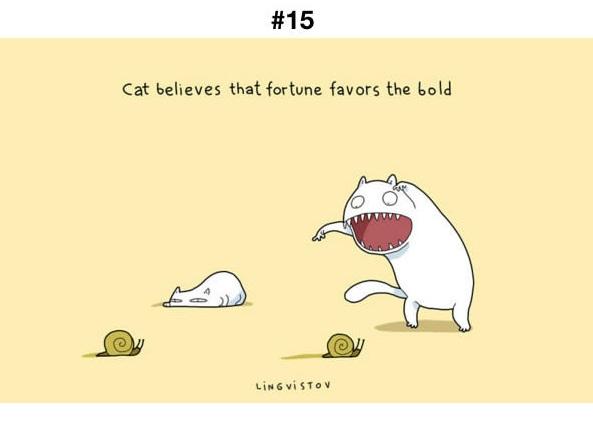 Manfaat Kucing 15