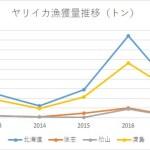 北海道におけるヤリイカ漁獲量の推移 2013~2017