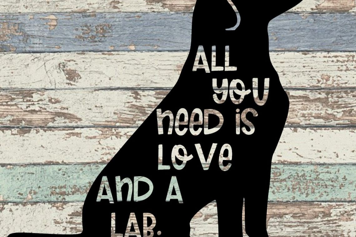 Download All You Need is Love and a Lab - A Pet SVG