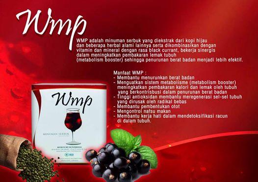 manfaat wmp
