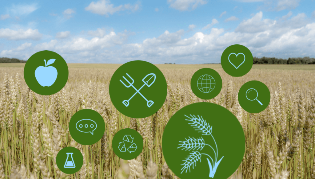 F Biotech - What We Do, providing solutions from nature