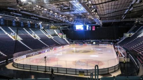184900-arena-IMG_3673