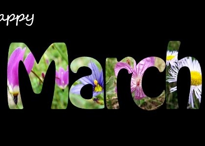 Happy New Month! (March 2016)