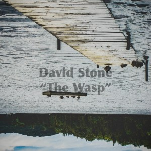 David Stone - The Wasp (for Trent)