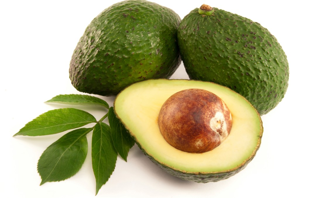 Avocados helping to unlock a new leukemia treatment?