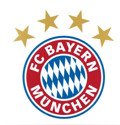 Info graph about Fc Bayern Munich