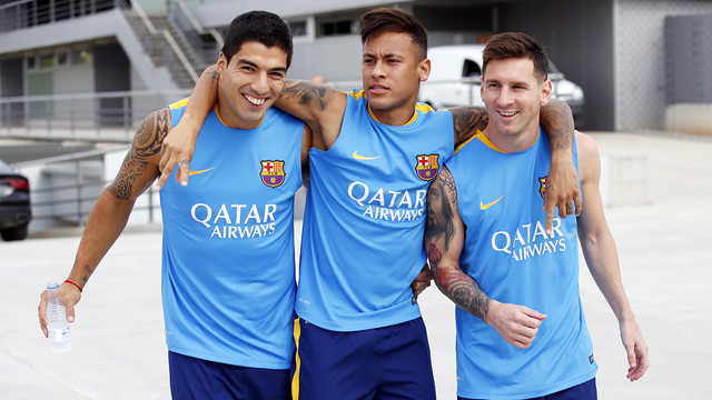 The MSN are ready for the final