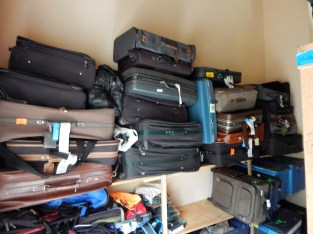 Donated suitcases in the ACE thrift store.