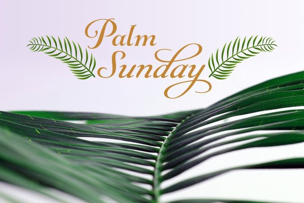 """A dark green palm frond is set against a pale pink-white background with """"Palm Sunday"""" written in orange cursive letters between two cartoon palms above. Image by Jeff Jacobs from Pixabay."""