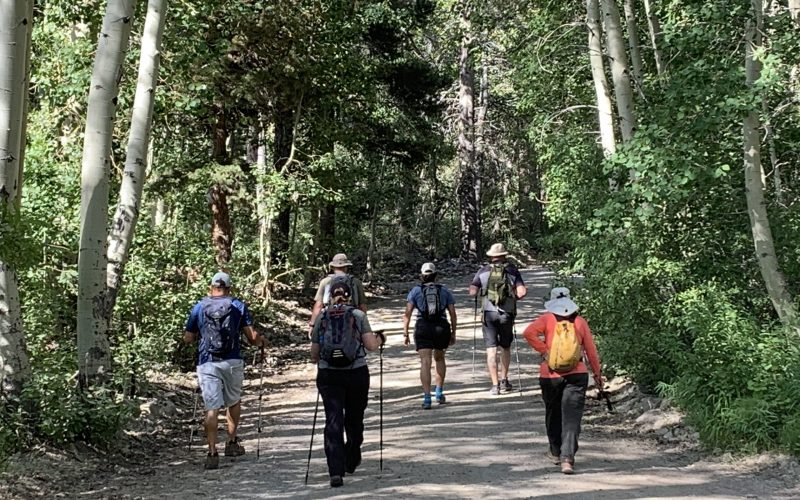 A photo taken from behind of six church members hiking on a dirt trail through a lush green forest.