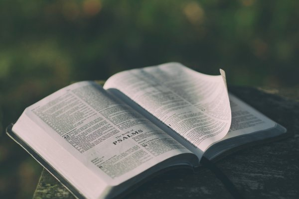 On a mossy surface, a Bible lies open to the book of Psalms, with a page being lifted in the breeze. Image by Pexels from Pixabay.