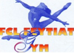 FCL Feytiat - Gym Sportive Fille