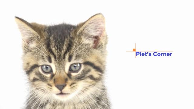 Piet's Corner