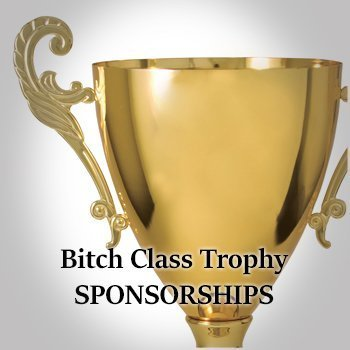 Bitch Class Sponsorships for store.