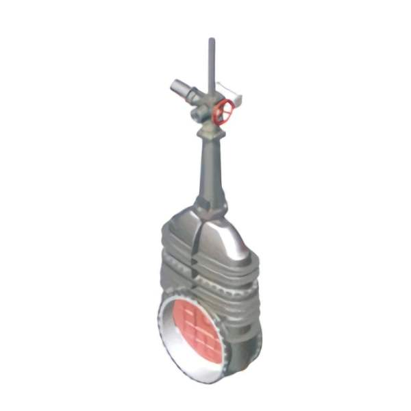 Gray rising rod wedge double gate valve on white background