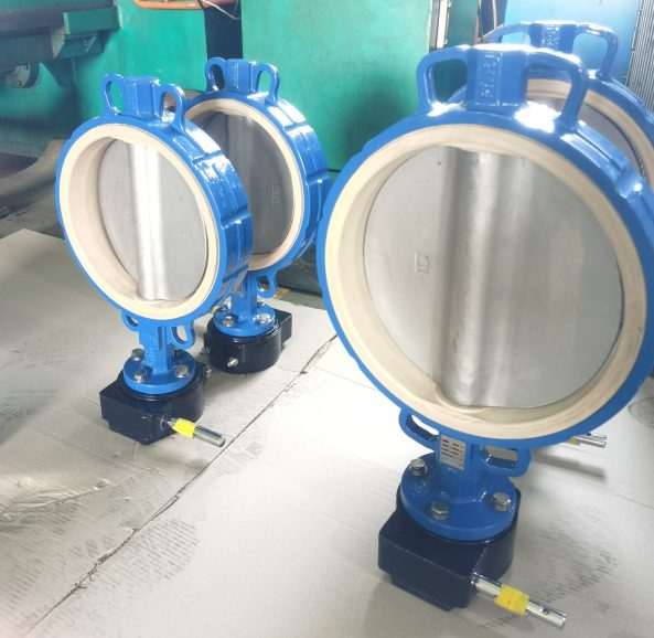 Lugs to clamp fluorine butterfly valve