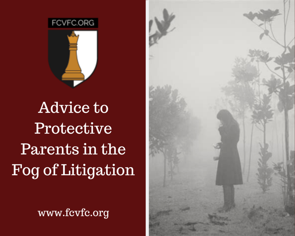 Advice to Protective Parents in the Fog of Litigation