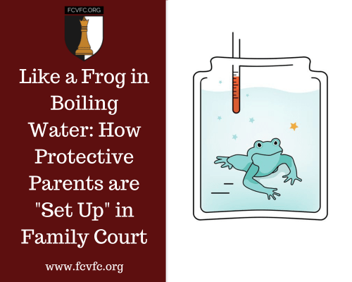 """Like a Frog in Boiling Water: How Protective Parents are """"Set Up"""" in Family Court"""