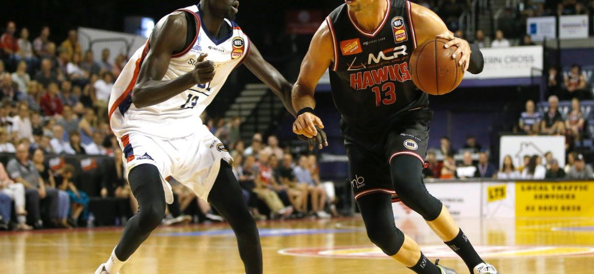 THE ILLAWARRA HAWKS SIGN DAVID ANDERSEN