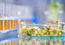 DNA and environmental monitoring strengthening quality in produce