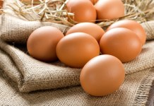 Cargill invests $20m expanding Minnesota egg processing facility