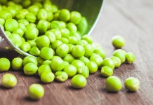 Roquette powers ahead with pea protein vision after investing in Equinom