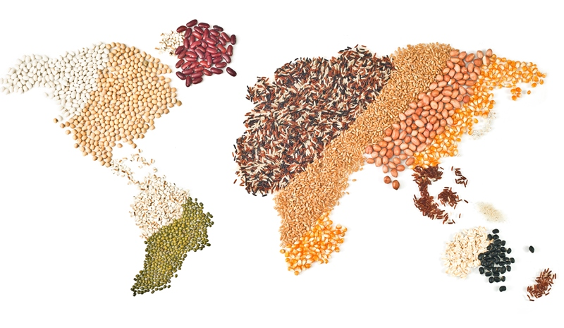 Blueprint for brexit ponders fate of uk pulses food drink blueprint for brexit ponders fate of uk pulses malvernweather Images