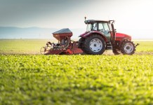 Putting food production at the heart of agriculture policy