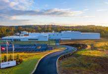 Symrise invests €5m in natural food ingredients facility