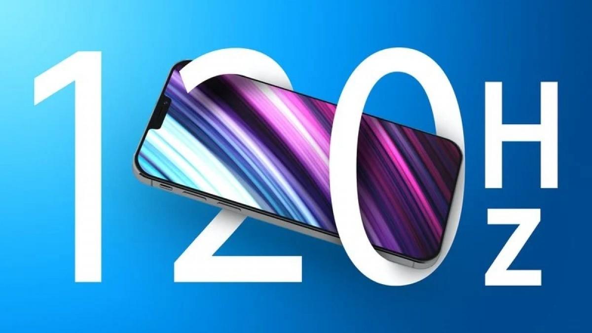 iPhone 13 Pro dan iPhone 13 Pro Max memiliki layar AMOLED 120 Hz buatan Samsung