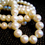 Masturbation Monday No. 124 — Pearls of Wisdom