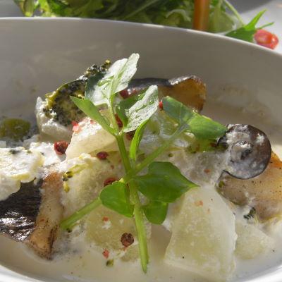 白身魚のクリームソース仕立て