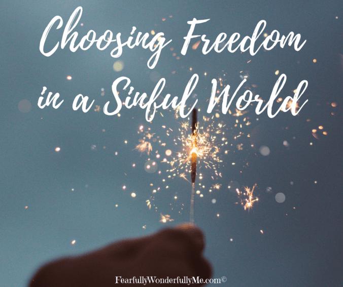 Choosing Freedom in a Sinful World