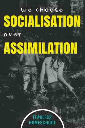 Homeschoolers choose socialisation over assimilation-Fearless Homeschool