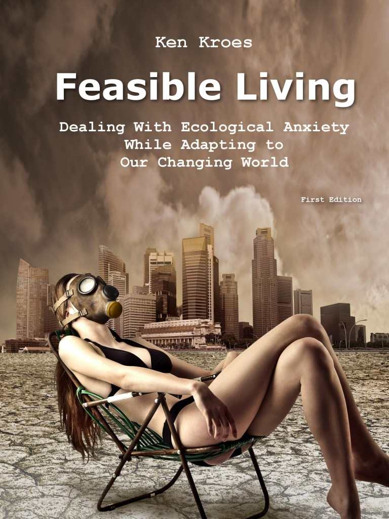 Book Cover: Feasible Living