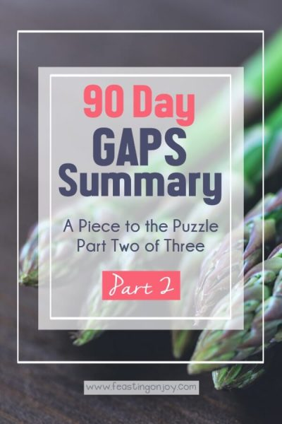 90 Day GAPS Summary { A Piece to the Puzzle Part Two of Three } | Feasting On Joy